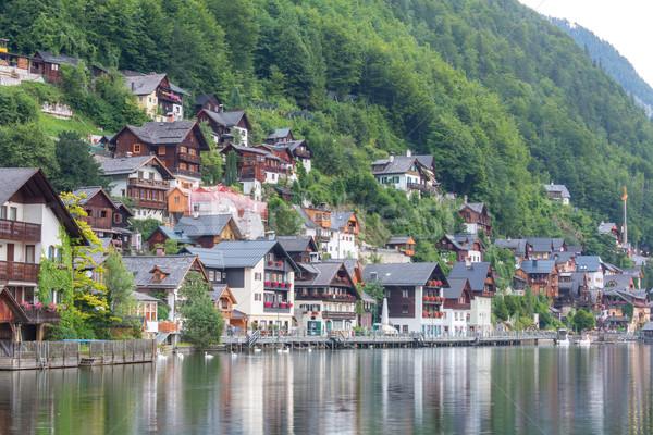 Dorp Oostenrijk klassiek stad natuur Stockfoto © vichie81