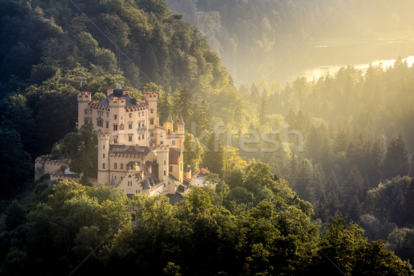 Hohenschwangau castle at Fussen Bavaria, Germany Stock photo © vichie81