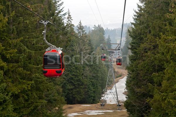 Dağ manzara İsviçre kablo araba ağaç Stok fotoğraf © vichie81