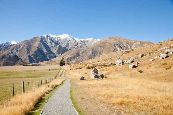 castle hill Arhur's Pass National Park New Zealnd Stock photo © vichie81