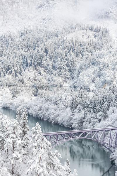 Сток-фото: зима · пейзаж · снега · покрытый · деревья · реке