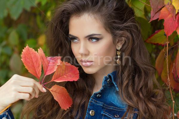 Gyönyörű elegáns nő pózol park ősz Stock fotó © Victoria_Andreas
