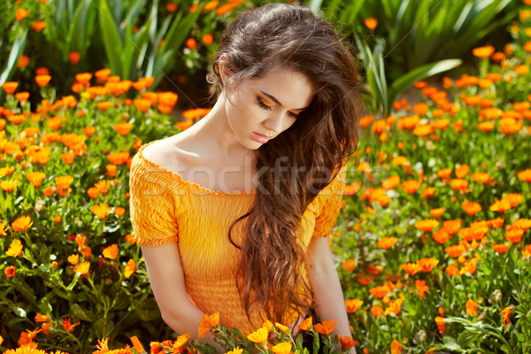 Healthy Long Curly Hair. Beautiful Brunette Woman over marigold  Stock photo © Victoria_Andreas