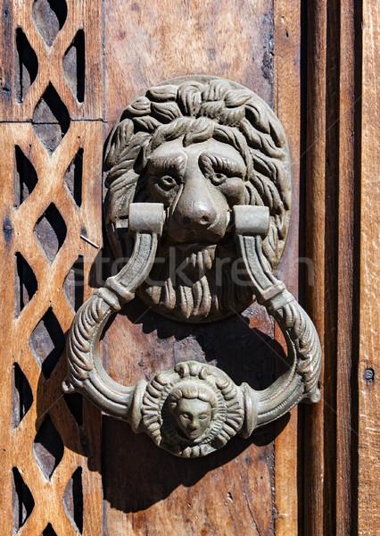 Deur hamer behandelen leeuw mooie oude Stockfoto © vilevi