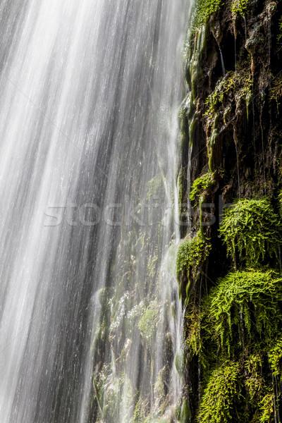 Foto stock: Fresco · verde · cachoeira · musgo · em · movimento · água