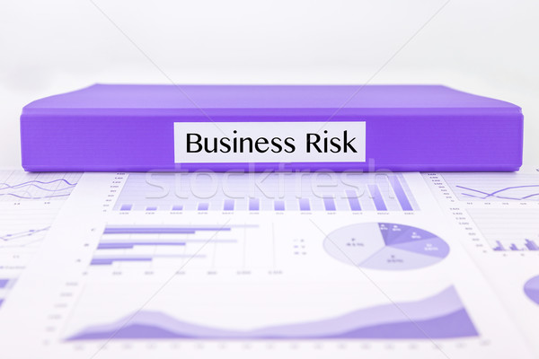 Business risk report with graph analysis Stock photo © vinnstock
