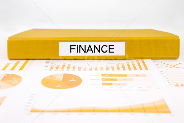 Financial documents, graphs, accounting and audit report for bud Stock photo © vinnstock