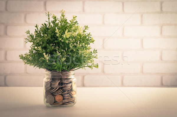 Plantes argent jar artificielle usine trèfle Photo stock © vinnstock