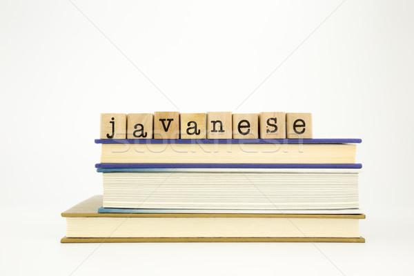 Idioma palabra madera sellos libros Foto stock © vinnstock