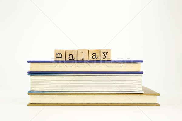 malay language word on wood stamps and books Stock photo © vinnstock