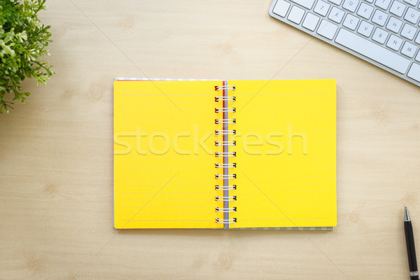 Blank yellow pages open book minimal style. Stock photo © vinnstock