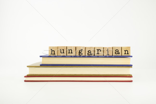 hungarian language word on wood stamps and books Stock photo © vinnstock