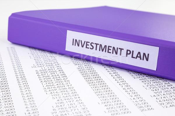 Financial report for investment plan Stock photo © vinnstock