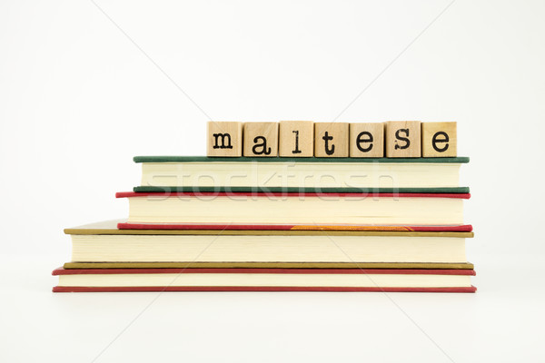 maltese language word on wood stamps and books Stock photo © vinnstock