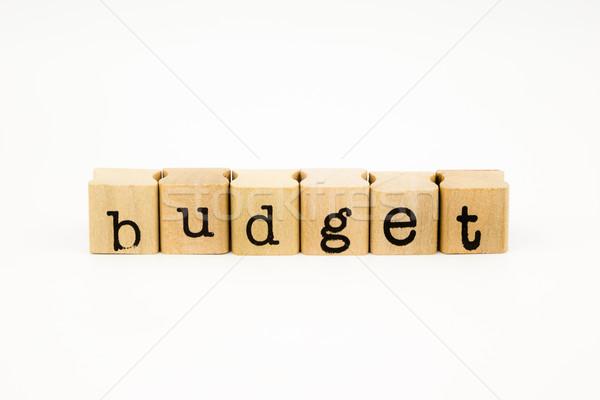 budget wording isolate on white background Stock photo © vinnstock