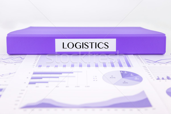 logistics management with graph analysis of distribution report Stock photo © vinnstock