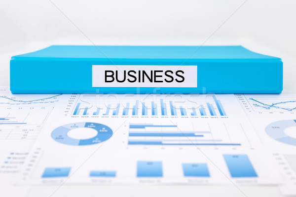 Business grafieken charts strategisch plan Blauw document Stockfoto © vinnstock