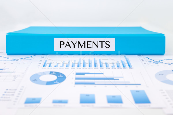 Payments documents, graph analysis and financial report Stock photo © vinnstock