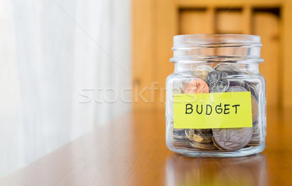 Budget planning and saving money Stock photo © vinnstock