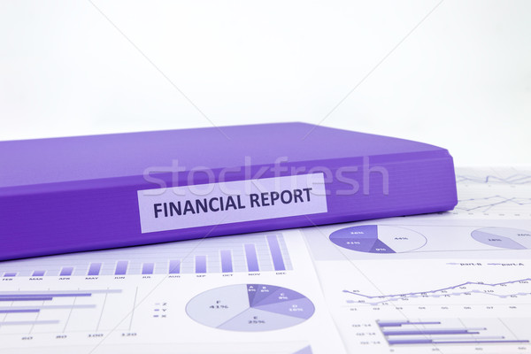 Financial report and business graph analysis  Stock photo © vinnstock