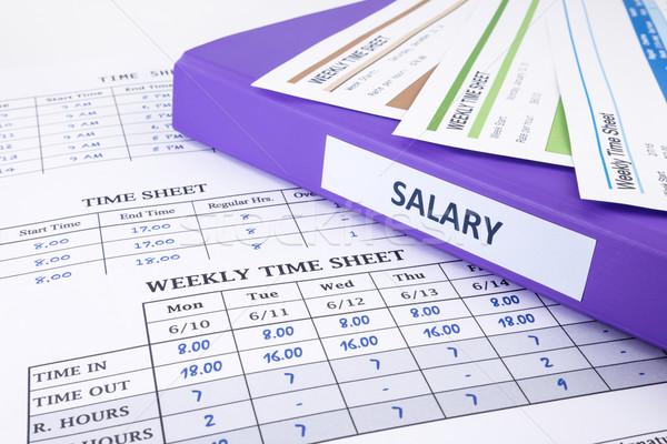 Employee time sheet and salary binder Stock photo © vinnstock