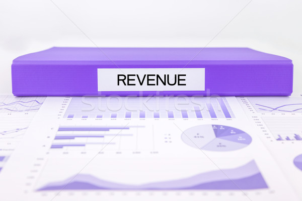 Revenue documents, graph analysis and financial report Stock photo © vinnstock