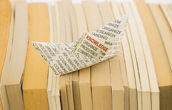 knowledge boat on books Stock photo © vinnstock