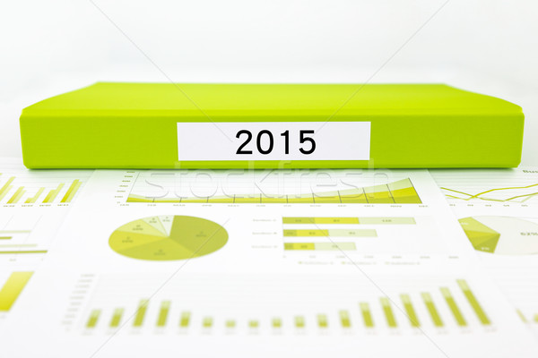 Year number 2015, graphs, charts and business budget planning Stock photo © vinnstock