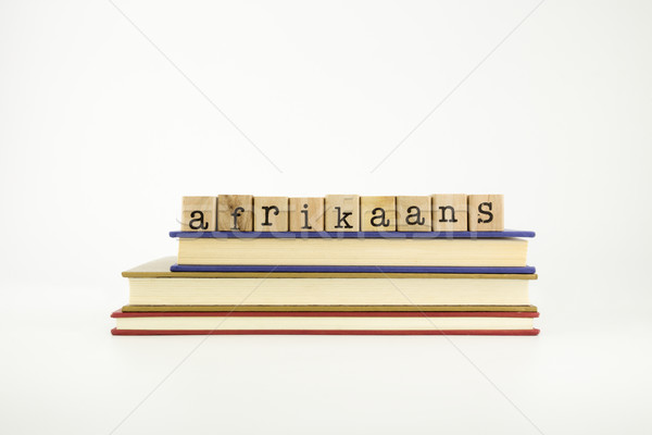 afrikaans language word on wood stamps and books Stock photo © vinnstock