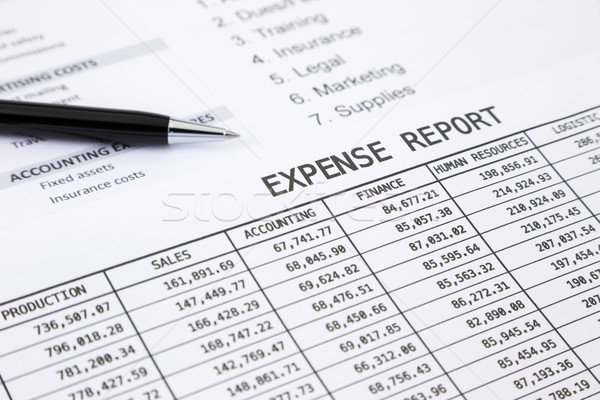 Annual expense report Stock photo © vinnstock