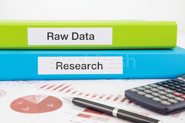 Brut données recherche documents rapports mots Photo stock © vinnstock