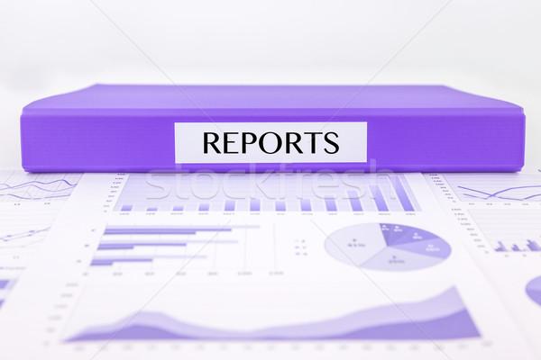 Değerlendirme değerlendirme grafikler veri Stok fotoğraf © vinnstock