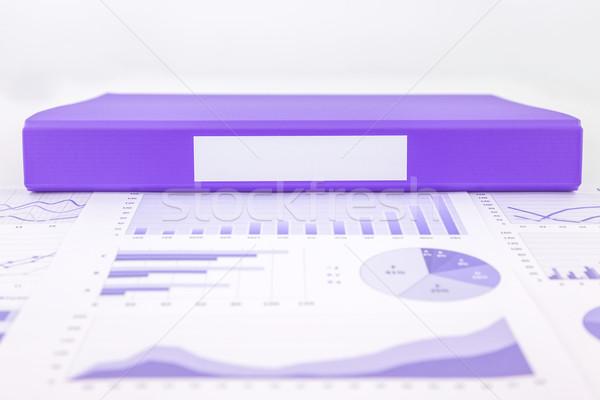 Viola cartella grafico sintesi educativo rapporti Foto d'archivio © vinnstock