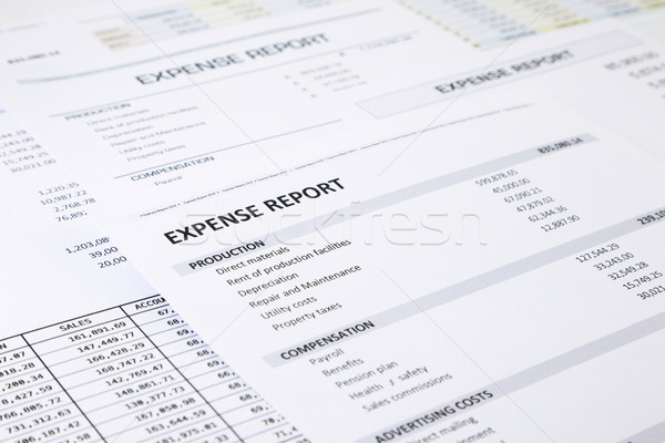 Business expense report Stock photo © vinnstock