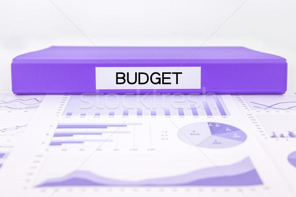 Orçamento gestão gráficos gráficos financeiro plano Foto stock © vinnstock