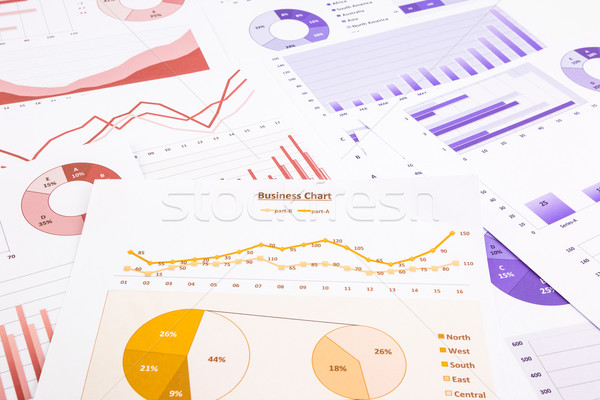 business charts, data analysis, marketing report and educational Stock photo © vinnstock