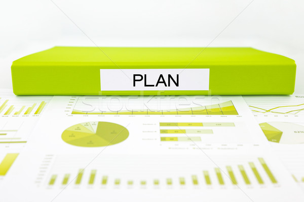 Strategisch plan beheer grafieken charts gegevens analyse Stockfoto © vinnstock