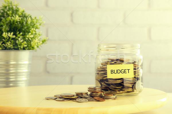 Budget geld investering plan retro-stijl munten Stockfoto © vinnstock