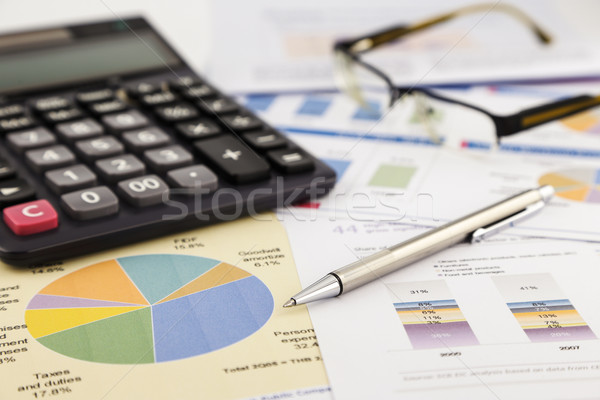 graphs and charts, financial report Stock photo © vinnstock