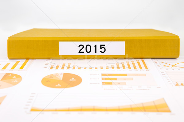 Year number 2015, graphs, charts and business annual reports Stock photo © vinnstock