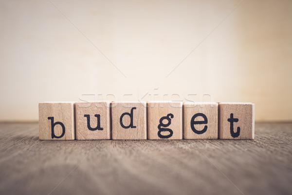 Woord budget vintage tekst houten Stockfoto © vinnstock