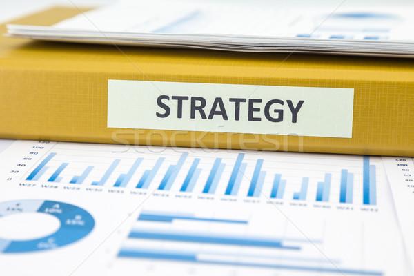 İş stratejisi veri analiz grafikler belgeler başarı Stok fotoğraf © vinnstock