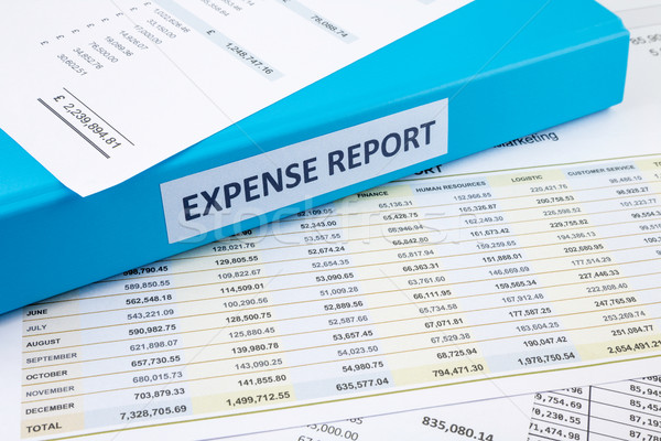 Business expense report with binder Stock photo © vinnstock