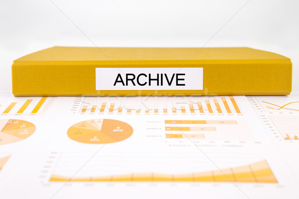Archive documents, graph analysis and business report Stock photo © vinnstock