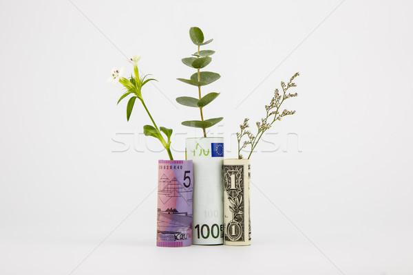 Bank jegyzetek növények valuta pénzügyi fogalmak Stock fotó © vinnstock
