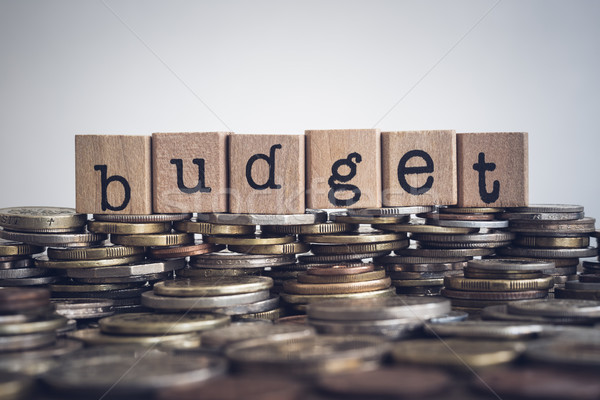 The word Budget on money and coins. Stock photo © vinnstock