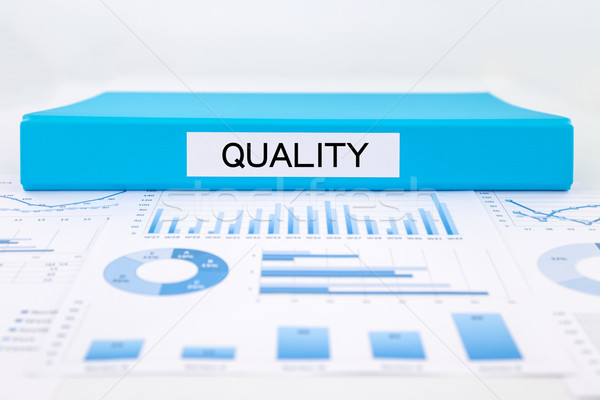 Quality management plan with, graphs, charts and business evalua Stock photo © vinnstock