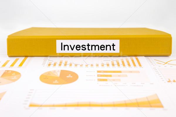 Yatırım rapor grafikler analiz finansal plan Stok fotoğraf © vinnstock