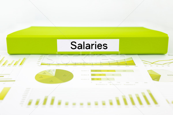Salaries documents, graph analysis and payment report Stock photo © vinnstock