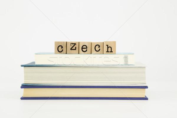 czech Stock photo © vinnstock